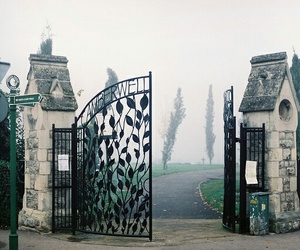 vintage, fog, and cemetery image