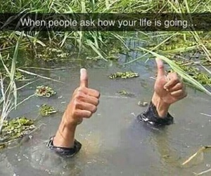 funny, life, and haha image