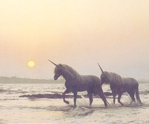 unicorn, beach, and sea image