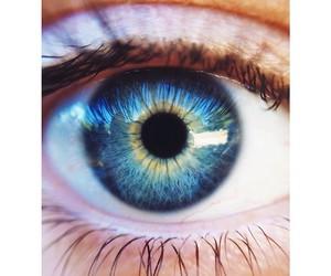 blue eye image