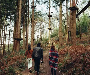 forest, nature, and hipster image