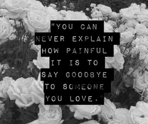 26 images about black white flowers quotes on we quotes sayings and black image mightylinksfo
