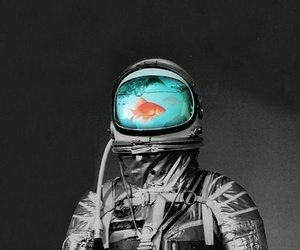 astronaut and fish image