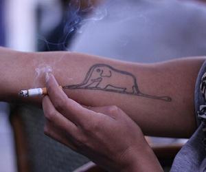 elephant and tatoo image