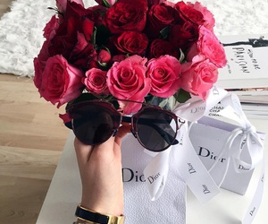 roses, fashion, and flowers image