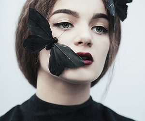black, butterfly, and girl image
