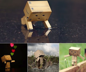 danbo, life, and things image
