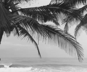 africa, landscape, and summer image