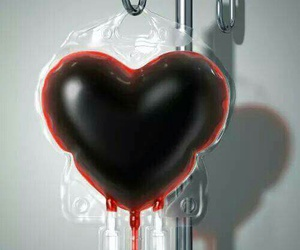 heart, sangre, and enfermeria image