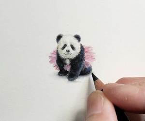 panda, art, and beautiful image
