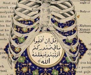 arabic, فن, and معبرة image