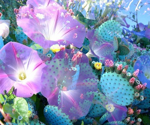 flowers, cactus, and pastel image
