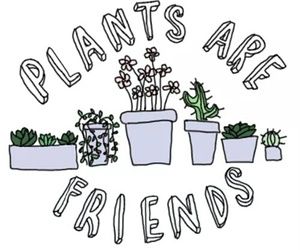 plants, friends, and grunge image
