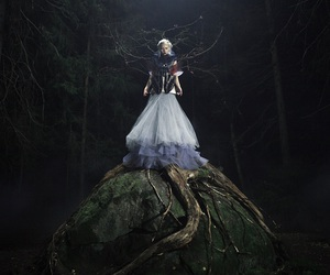 estonia, tutu, and fairy image