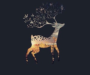 wallpaper, animal, and deer image