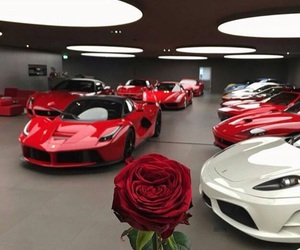 cars, rose, and luxury image