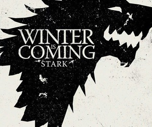 got, stark, and game of thrones image