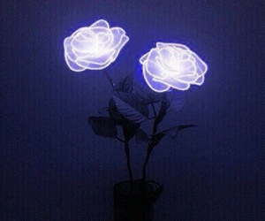 rose, grunge, and neon image