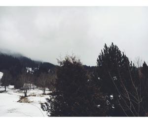 sky, snow, and tree image