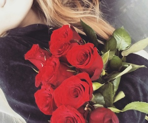 inlove, roses, and world image