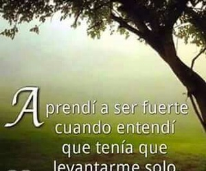 frases, quotes, and entender image