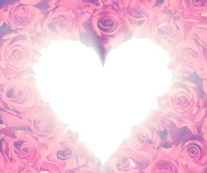 heart, roses, and background image