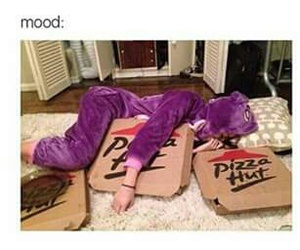 funny, pizza, and mood image