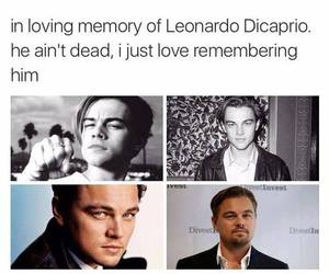 Leo, dicaprio, and funny image
