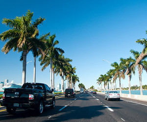 summer, car, and palm trees image