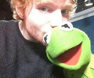 ed sheeran and ed image