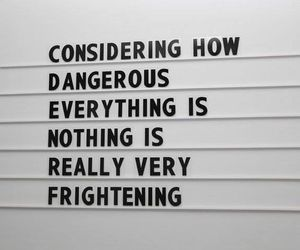 quote, life, and dangerous image