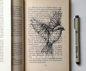 bird, drawing, and book image