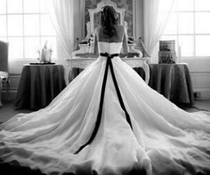 novia image
