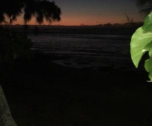 beautiful, hawaii, and sunset image
