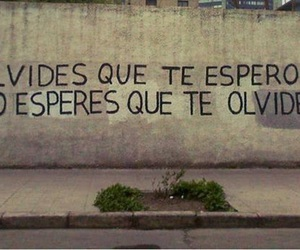 accion poetica and forget image