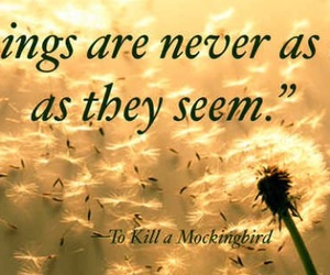 books, quotes, and To Kill A Mocking Bird image