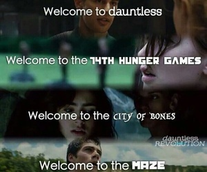 divergent, hunger games, and books image