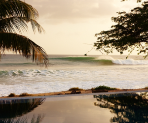 beach, photography, and sea image