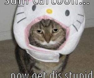 funny, hello kitty, and meow image