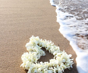 beach, flowers, and heart image