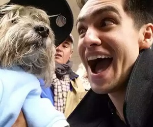 brendon urie, cutee, and dog image