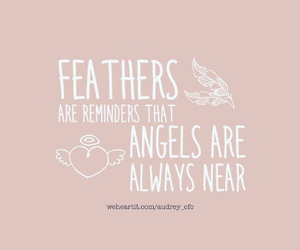 always, angel, and feathers image