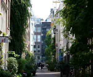 amsterdam, escape, and nature image