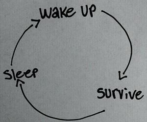life, sleep, and survive image