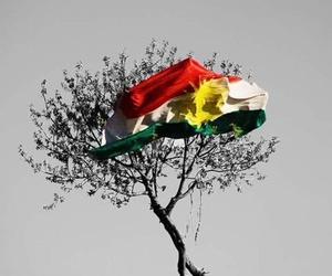 kurd, peshmerga, and pkk image