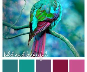 color, pallete, and magic image