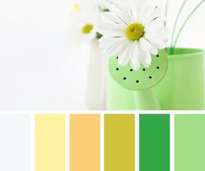 balance, color, and white image