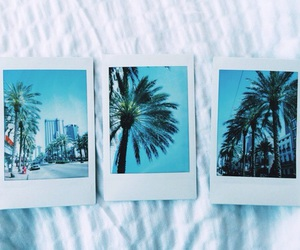 blue, polaroid, and summer image