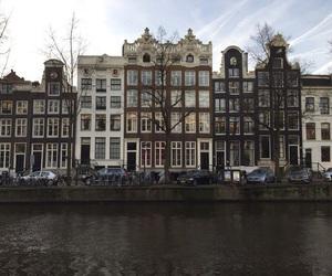 theme, tumblr, and amsterdam image
