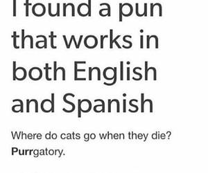 english, ha, and joke image